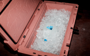 how to make ice blocks for coolers